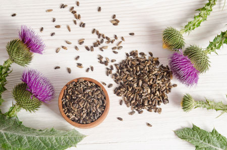 raw.image.alt.seeds